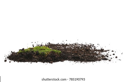 Green moss and pile dirt isolated on white background, with clipping path