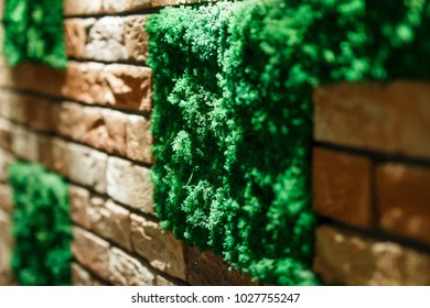 green moss of a square shape on a brick wall in a room