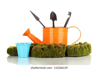Green moss and watering can with gardening tools isolated on white