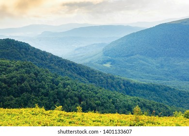 green mountain background on a cloudy forenoon. forested hill rolling in to the distant mountain ridge. view from a grassy edge of a meadow