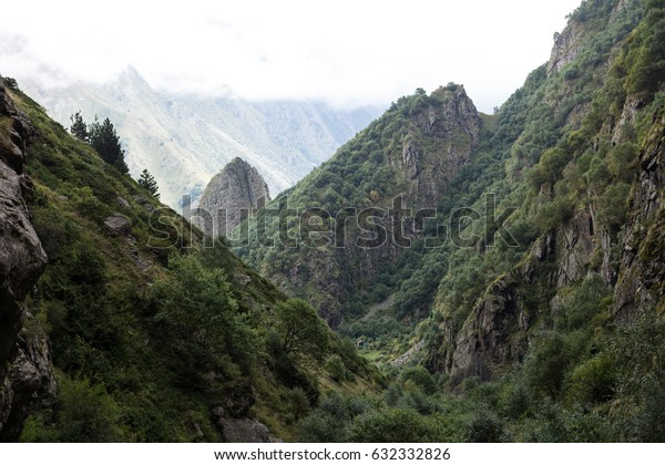 Green mountain covered with forest on the blue sky background. Panorama view