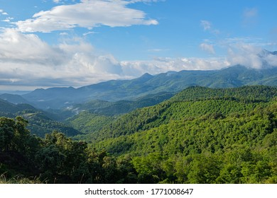 Green mountain forest peak scenic view on a blue sky with morning clouds on Montseny mountain peak, Catalonia