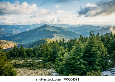 Green mountain forest in scenic Carpathian mountains, Ukraine, May 2016