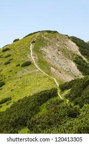 green mountain top