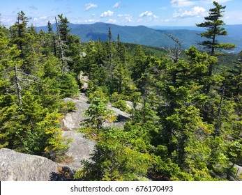 Green Mountains of Vermont as viewed from the Long Trail to Camel's Hump