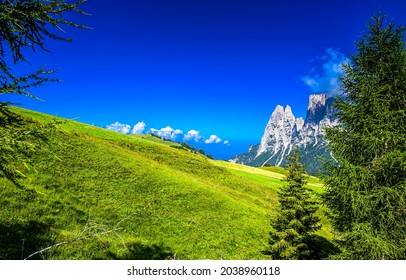 Green mountainside on a clear sky background. Mountain scene. Summer in mountains. Mountain summit view