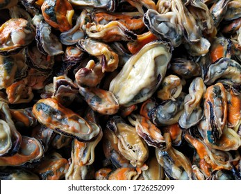 Green mussel) is an oyster that can live in both saltwater and brackish water. Currently, it is a popular shellfish that has a lot of shellfish meat.  Shellfish can be eaten almost entirely.