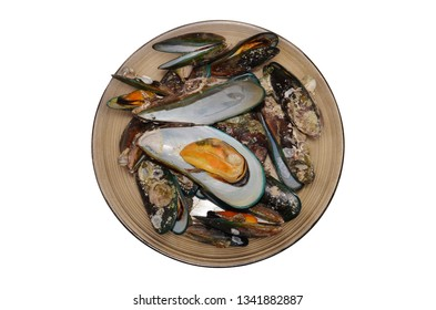 Green mussel seashell in dish isolated with top view