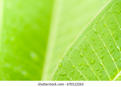 Nature Wallpaper Images Stock Photos Amp Vectors Shutterstock