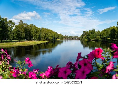 the green nature in Karlstad Sweden with colorful flowers in the foreground