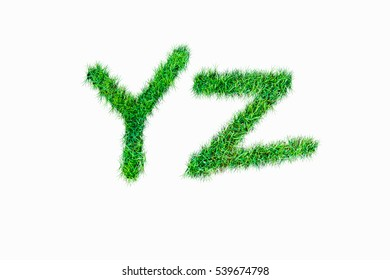 Green nature real grasss yz font isolated on white