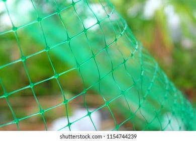 Green net texture background