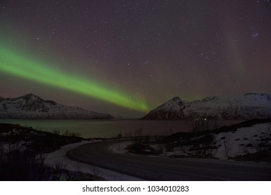 Green Northern Light (Aurora Borealis) in a clear starry night above a Norwegian fjord, Tromsø, Norway