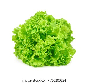 green oak lettuce on white background
