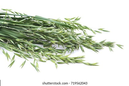 Green oats isolated on a white background.