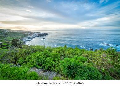 Green ocean coast on the northern Tenerife