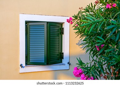 Green old wooden window jalousie on a cream wall with pink flowers in Greece
