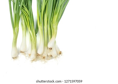 Green onion or garlic chives, chinese chive isolated on white background.Fresh healthy organic green vegetable