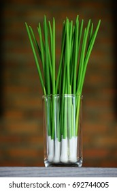 green onion isolated on the Brown background. in thailand