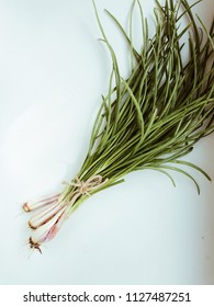Green onion isolated on the white background. flat lay
