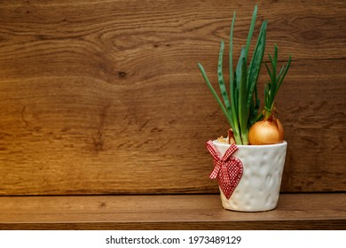 green onion in a white pot with heart pattern on the wooden background. High quality photo - Shutterstock ID 1973489129
