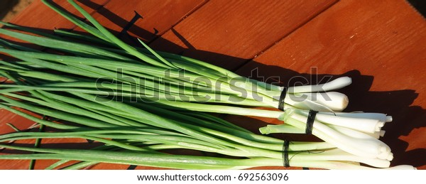 Green onions on the table