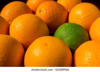 A green orange among ripe ones