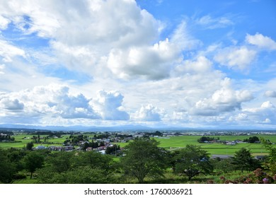 Green paddy rice field under the big blue sky. Osaki-Koudo is one of Globally Important Agricultural Heritage Systems (GIAHS).
