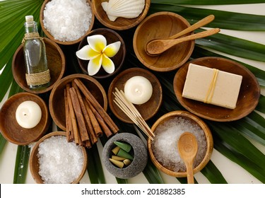 Green palm background- spa sitting