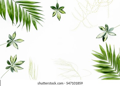 green palm leaf branches on white background. flat lay, top view