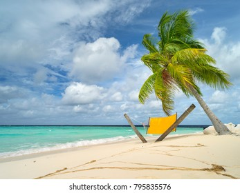 green palm with yellow hammock on the beach on Maldives island