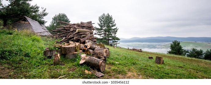 A green panorama with a piece of wild forest, blue moss and a pile of chopped firewood. In the background, you can see the rises of the mountain massifs.  - Shutterstock ID 1035456112