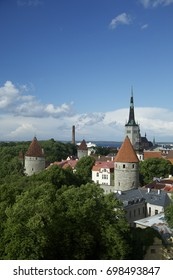 Green panorama of Tallinn, Old Town. Estonia