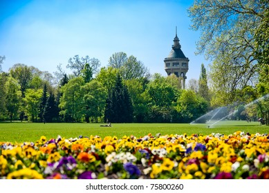 Green Park with Flowers and Tower in background