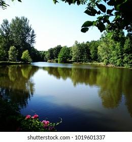green, park, landscape