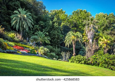 Green park with lawn and palms in summer, villa Carlotta, Como lake, Italy.