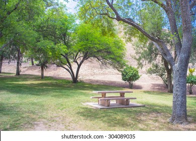 Green park trees above a picnic table in the southwest of California.