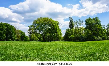 green parkland panorama