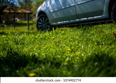 Green pasture with car