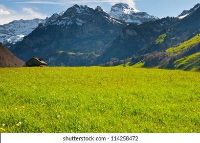 Green Pastures around Farm House in Switzerland