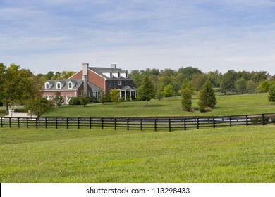 Green pastures of  horse farms. Summer landscape.