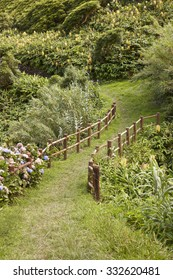 Green pathway surrounded by lush vegetation in Flores, Azores island. Portugal