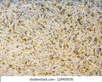 Similar Images, Stock Photos & Vectors of rice texture