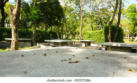 green peaceful garden in summer with white stone table/desk for meeting or community in the lush nature park in the university, many tall tree and blue sky, many dry leaves messy on the big table
