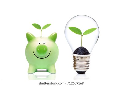 Green piggy bank and a light bulb with a tree inside - Living Green and Saving Energy