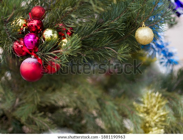 green-pine-branches-colorful-toys-600w-1