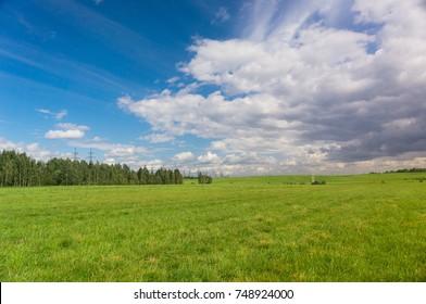 Green Plain Grass Land
