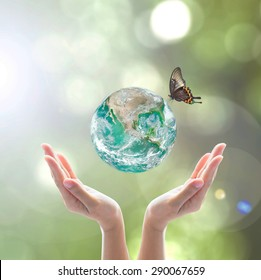 Green planet with butterfly for world environment day, ecological friendly creative concept: Elements of this image furnished by NASA