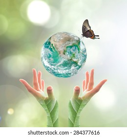 Green planet on hands with tree leaves for world environment day and ecological friendly concept: Elements of this image furnished by NASA