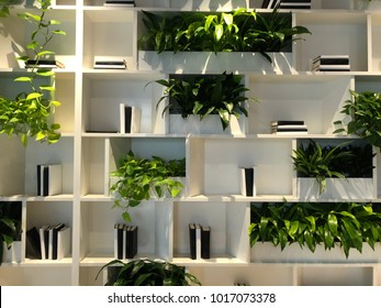 Green Plant and Book Shelf Wall System